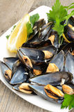 Ref mussels with lemon Royalty Free Stock Photos