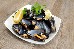 Ref mussels with lemon Royalty Free Stock Image
