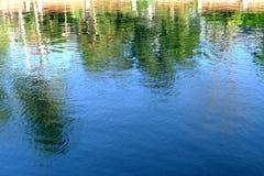 Refection дерева в реке стоковое фото