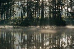 Refection острова и кустарников соснового леса на озере на зоре с волшебством неба и части 9 облаков стоковое изображение