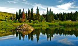 Refections. Calm morning in the Owyhee Mountains at a beaver pond. Reflections, clouds,water,habiitat Stock Images