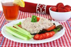 Refeição da salada de atum Fotos de Stock