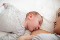 Refeição do bebê Imagem de Stock Royalty Free
