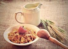 Refeição do café da manhã Imagens de Stock