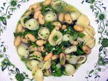 Refeição do vegetariano Imagem de Stock