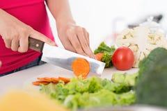 refeição HOME-cozinhada Imagens de Stock