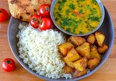 Refeição homecooked diária dal do indiano e arroz foto de stock royalty free