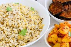Refeição indiana do vegetariano imagens de stock