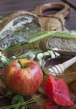 Refeição orgânica fresca saboroso fotos de stock
