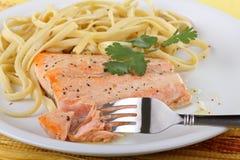Refeição Salmon da faixa Fotografia de Stock Royalty Free