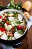 Refeição saudável do vegetariano Fotos de Stock