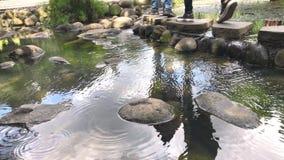 Refelction von zwei Leuten gehen Überfahrt-Fußweg auf Naturstein-Teich Wasser-Kräuselung auf ruhigem Teich stock video