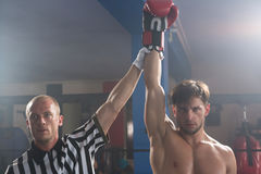 Referee holding hand of winning young male boxer Stock Photos