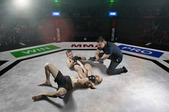 Referee is stopping mma fight after the submission move. On big mma stadium stock photo