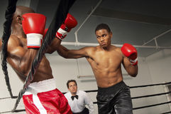 Referee Watching Boxers Fight In The Ring Stock Images