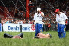 Referees inspect a pair of wrestlers at the Kirkpinar Turkish Oil Wrestling Festival in Edirne in Turkey. Royalty Free Stock Image