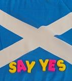 Referendum: mówi tak kampanię Fotografia Stock