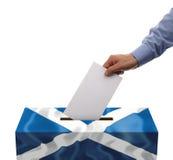 Referendum scozzese di indipendenza Fotografia Stock Libera da Diritti