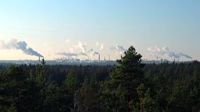 Refinaria de óleo mineral com as chaminés de fumo no horizonte e floresta conífera natural no primeiro plano video estoque