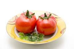 Refine tomatoes with parsley Stock Images