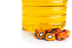 Refined palm oil in bottle with fresh oil palm fruits. Stock Images