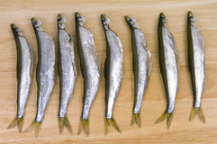 Refined  smelt Royalty Free Stock Photo