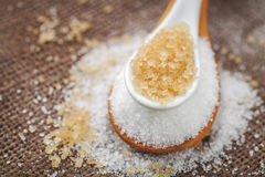 Refined sugar and cane sugar Stock Image