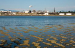 Refinery at Low Tide. A Washington oil refinery on Anacortes Island on the Puget Sound, Washington, at low tide Stock Photography