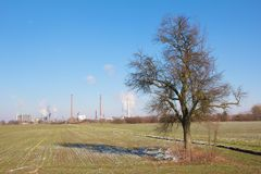 Refinery and Tree Stock Image