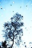 Refléter de résumé d'un arbre dans l'eau d'un lac image stock