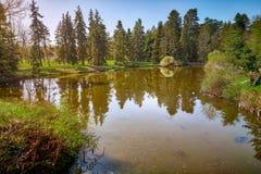 Refléter des conifères en rivière image stock