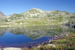 Refléter la montagne photo stock