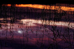 Refléter le ciel de soirée dans l'eau Images stock