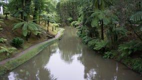 Reflétez le lac en jardin de Terra Nostra dans le sao Miguel, Açores Image stock