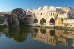 Reflect in Hama. Reflect in the city of Hama, Syria royalty free stock photo