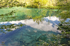Reflect in Plitvice lakes - Croatia. Stock Photography