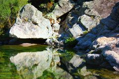 Reflect of stone. In the corsica river france royalty free stock image