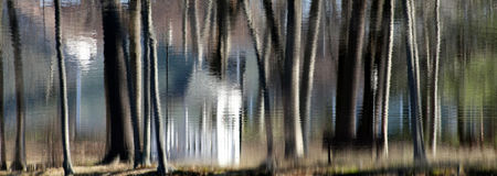 Reflected Gazebo. Trees and gazebo reflected in a rippled pond Stock Images