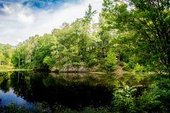 Reflected Island on a Lake Stock Image