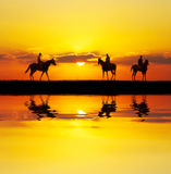 Reflected riders stock image