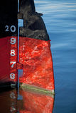 Reflected Rudder Stock Images