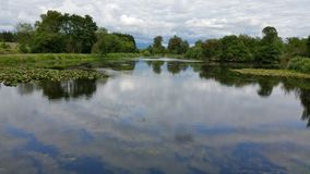 Reflected sky on pond. Blue sky and clouds reflected on pond royalty free stock image