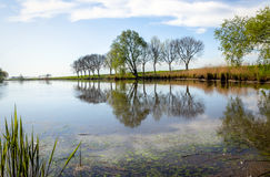 Reflected trees in a mirror smoth water surface Royalty Free Stock Photography