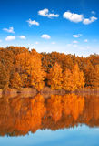 Reflecting the autumn landscape on the water surface of the pond. Sunny day Stock Images