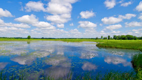 Reflecting clouds, carlos avery Stock Images