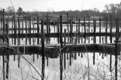 Reflecting Docks. Piers on docks reflecting in still water on a colorless day stock photo