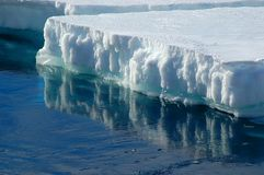 Reflecting ice floe royalty free stock photo