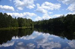Reflecting Lake. An isolated lake in the New Jersey Pine Barrens reflecting pines on the shore and white puffy clouds in the sky royalty free stock images