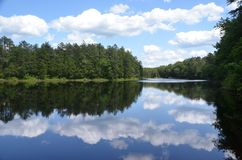 Reflecting Lake. An isolated lake in the New Jersey Pine Barrens reflecting pines on the shore and white puffy clouds in the sky stock photos