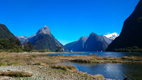 Reflecting Mountains in Milford Sound Royalty Free Stock Photos